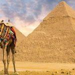 Fakta Tentang Mesir
